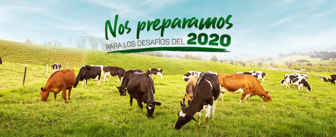 Sector lácteo, listo para encarar un desafiante 2020