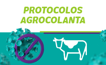 protocolos en Agrocolanta
