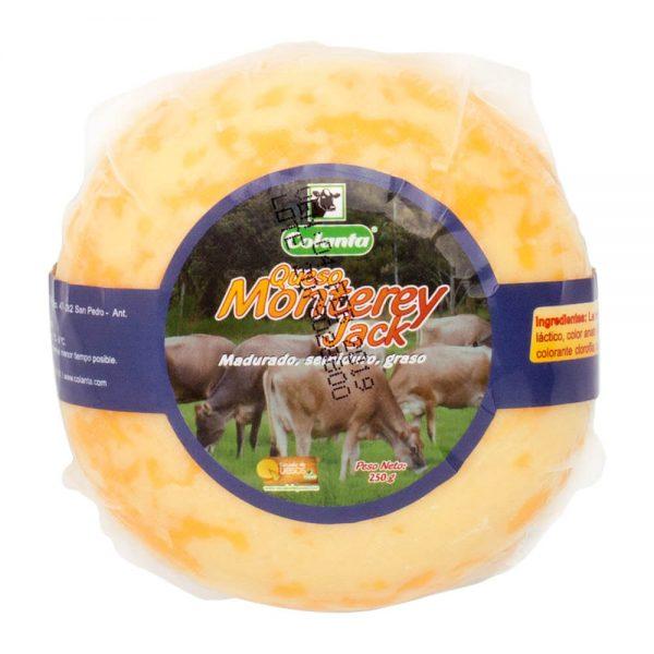 queso-monterrey-250