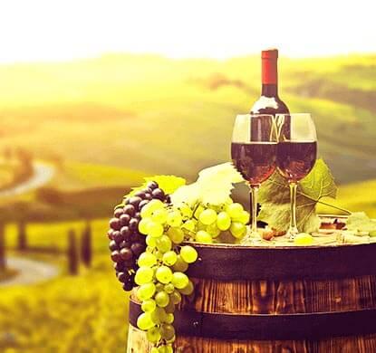 vinos colanta y aceites montefrio interna vinos deliciosos vinos más ricos